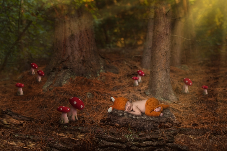 woodland-fox-newborn-photo-session-in-olympia-by-fairies-and-frogs