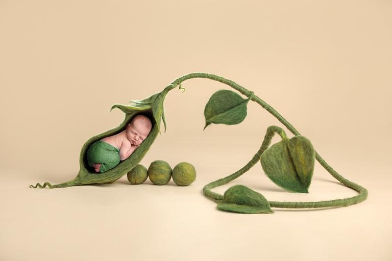Tacoma-newborn-baby-photographer