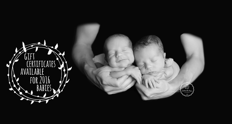 Newborn-Photographer-Olympia-Gift-Certificates-Fairies-and-Frogs-Photography