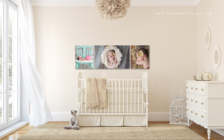 create-the-most-beautiful-wall-art-with-your-images-from-fairies-and-frogs-photography-in-olympia-washington