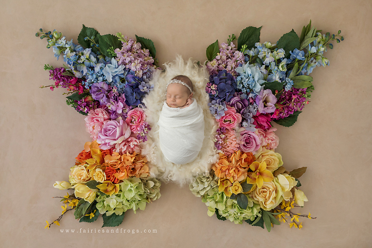 newborn-baby-in-rainbow-butterfly-pose-in-olympia-by-fairies-and-frogs-photography