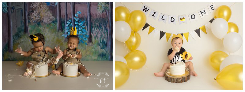 where-the-wild-things-are-cake-smash-theme-first-birthday-photographer-in-seattle