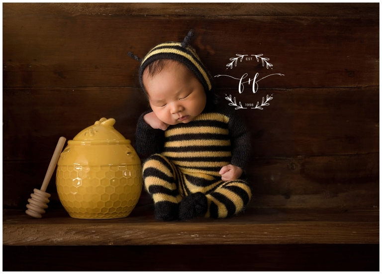 Olympia Newborn Session Photographer