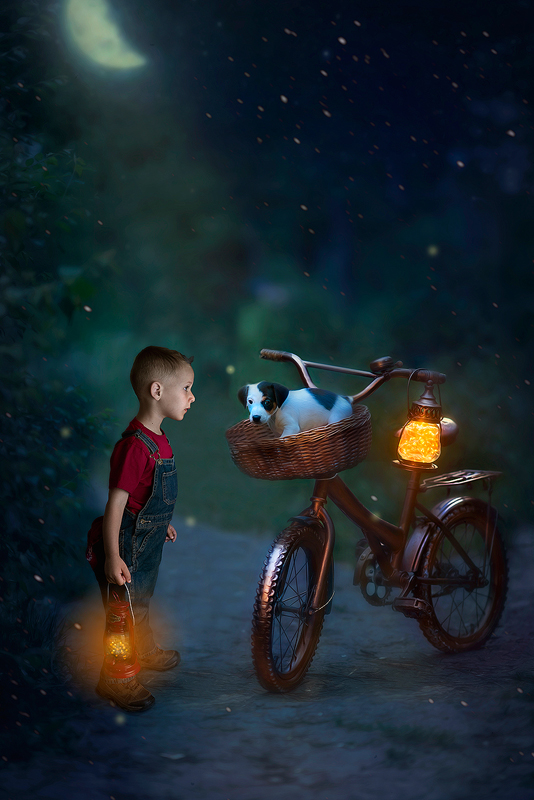 Olympia-Childrens-Photographer-Fairies-and-Frogs-Photography