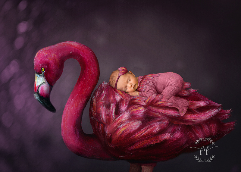 A newborn baby in pink sleeps on a flamingo