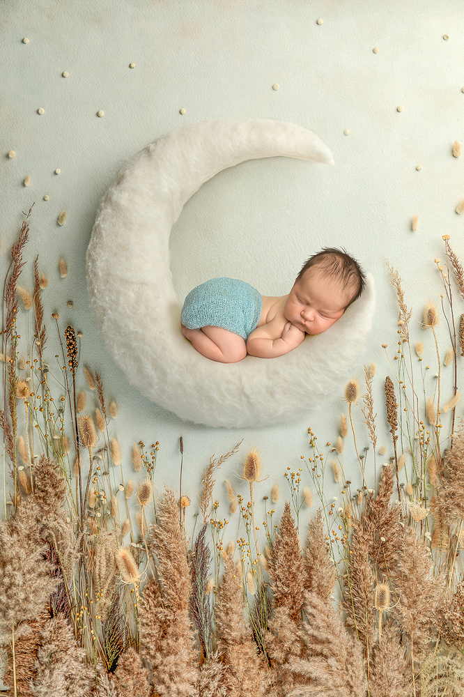 Seattle Tacoma newborn baby photographer by Fairies and Frogs Photography