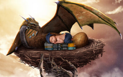 Bellevue Newborn Photographer   Baby Royce